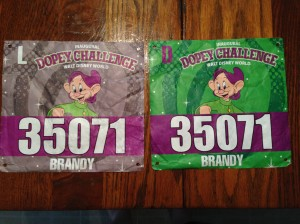 The green bib is for the 5k and 10k. The grey bib is for the half and full marathons.