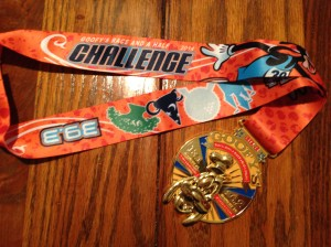 39.3 miles in two days earns one the Goofy's Race and a Half Challenge medal.