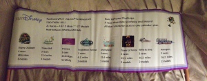 2014 runDisney race journey to run all the races. It was a lot of miles, a lot of money, and a lot of fun!